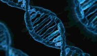 genes and back pain
